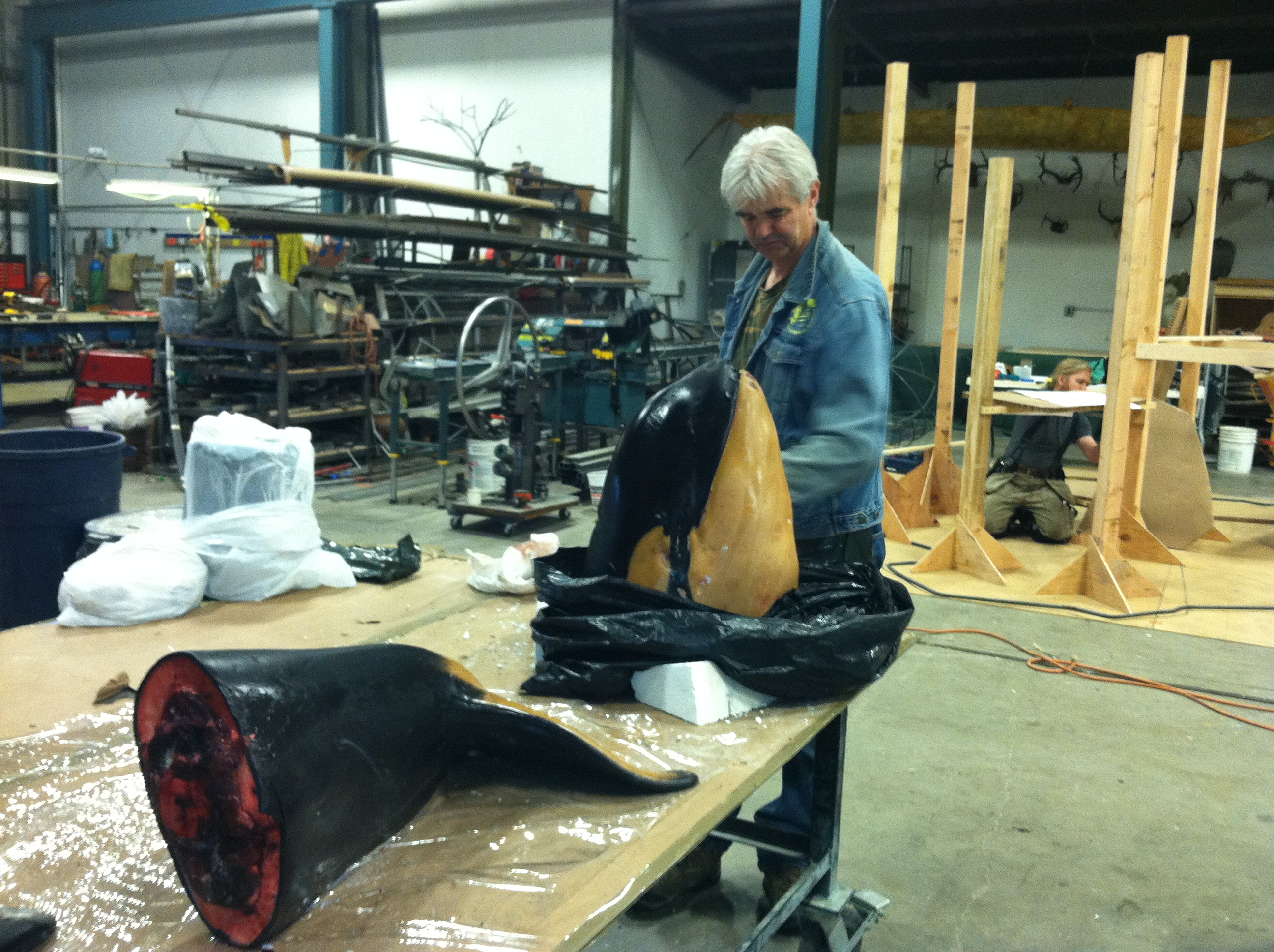 A Baby Orca For Sitka Sound Science Center | scientificartstudio